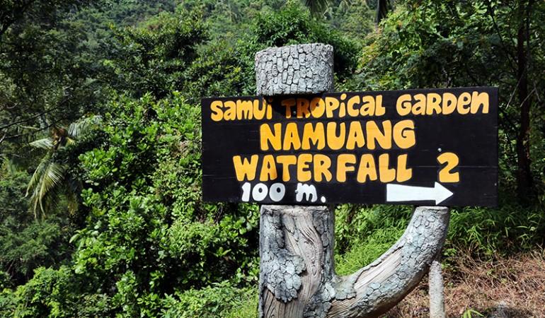 Koh Samui seværdigheder: 11 ting at opleve på Koh Samui