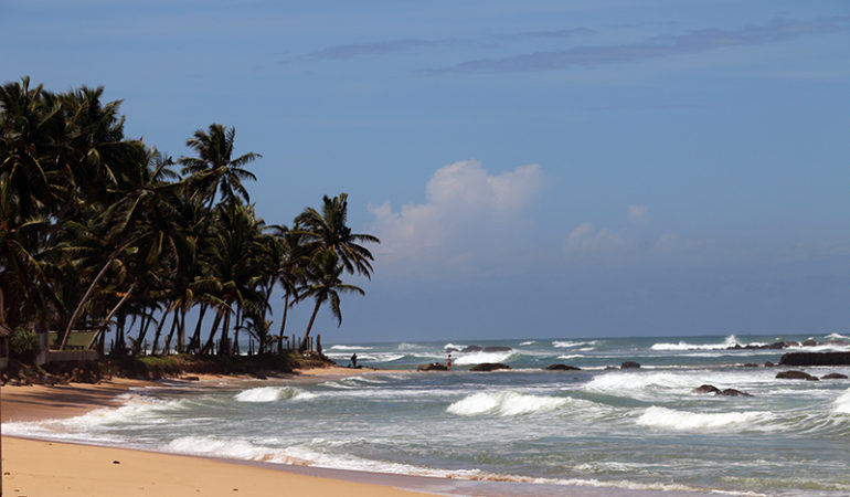 Mirissa – vores første stop på Sri Lanka