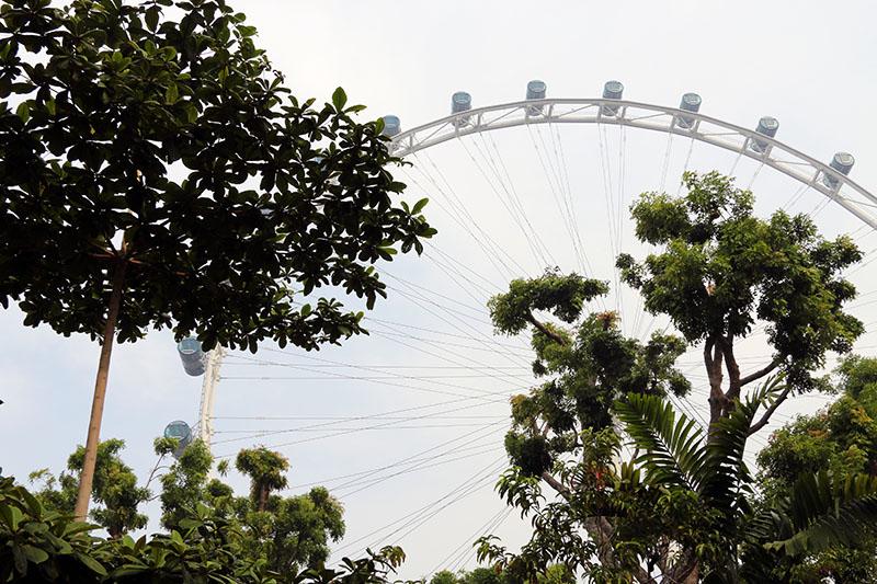 singaporeflyer-1