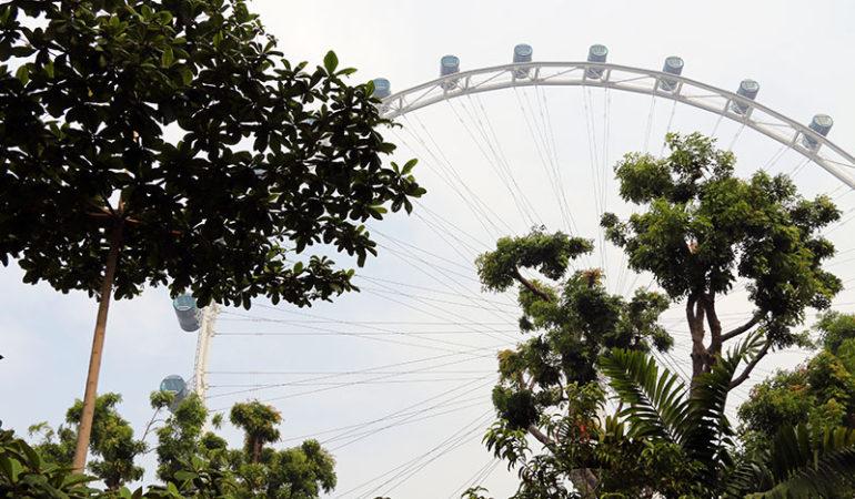 Overkom din højdeskræk med Singapore Flyer